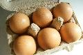 らでぃっしゅぼーや、平飼い卵